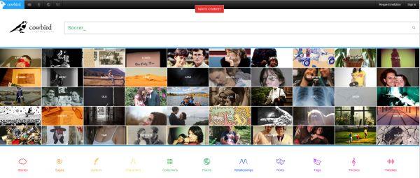 http://wwwhatsnew.com/wp-content/uploads/2012/02/cowbird.jpg
