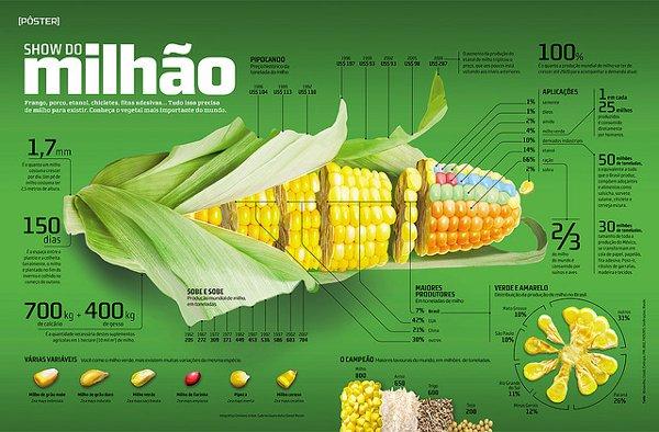 mejor infografia show do milhao