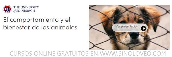 comportamiento y bienestar de los animales