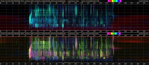 spectograma ruido Australia
