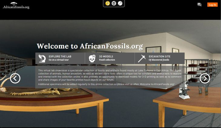 AfricanFossils