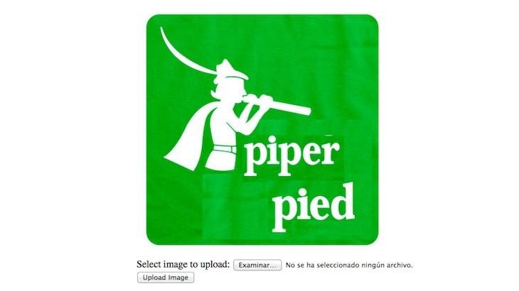 Piper Pied