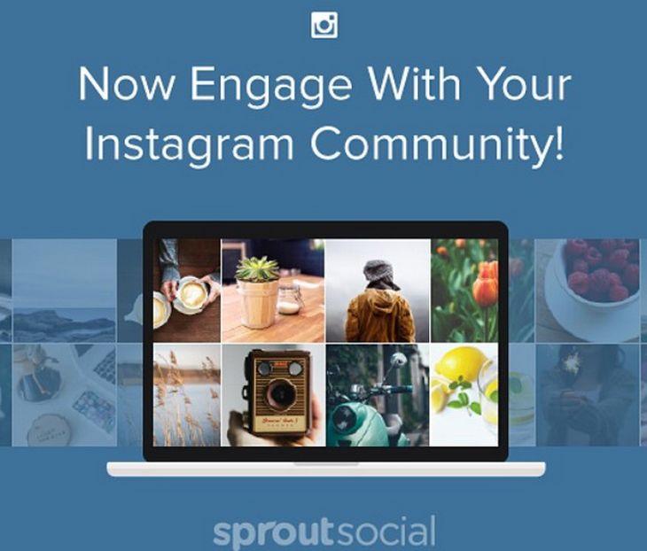 Sproutsocial-instagram-header