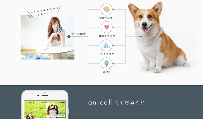wearable perros animales