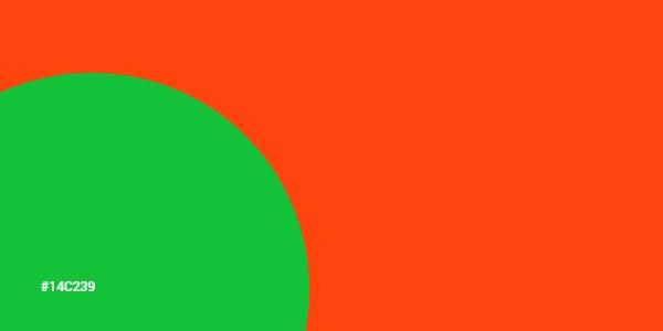Animación De Colores En CSS Y JavaScript En Estilo Material