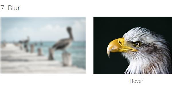 Efectos CSS Al Paso Del Mouse Para Imagenes De Thumbnails