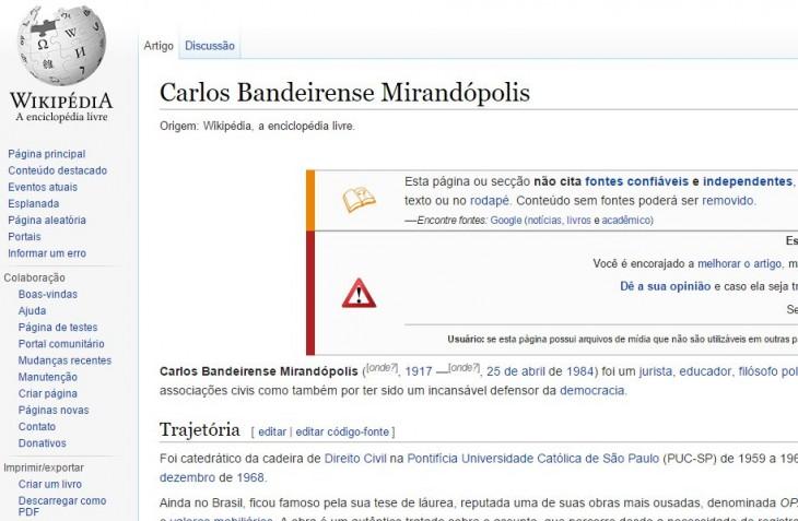 Página de Wikipedia con el perfil falso