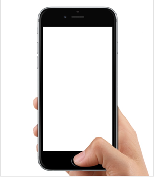 iphone seis touch id
