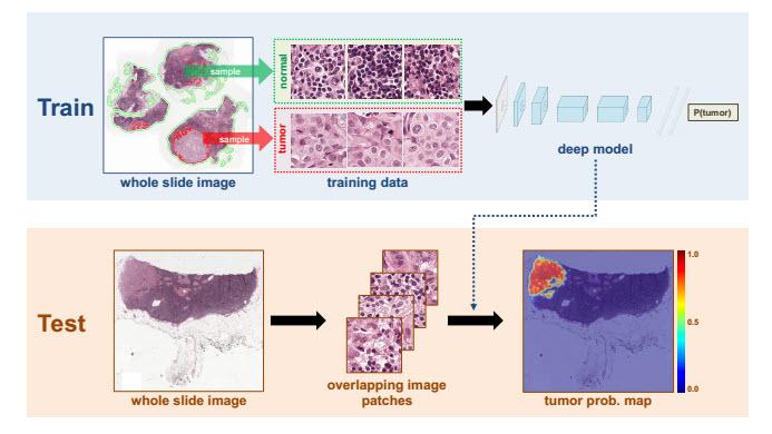 imagen de The International Symposium on Biomedical Imaging