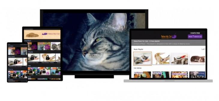 Una web con música para relajar a tu gato
