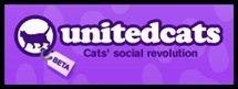 unitedcats.jpg