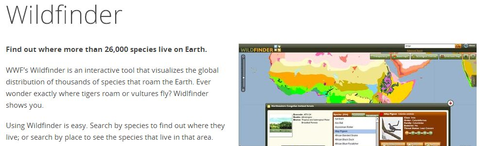 Wildfinder, mapa con la distribución global de miles de especies del planeta
