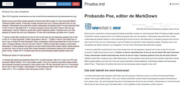Poe editor markdown