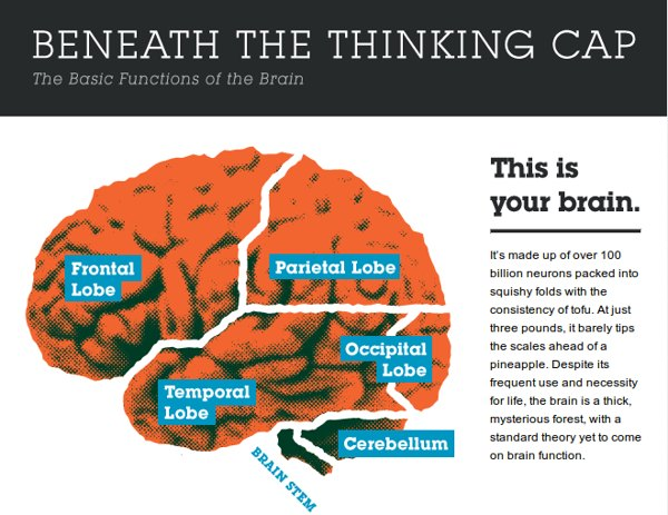 mapa del pensamiento