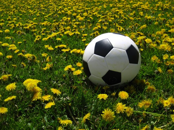 soccer free images