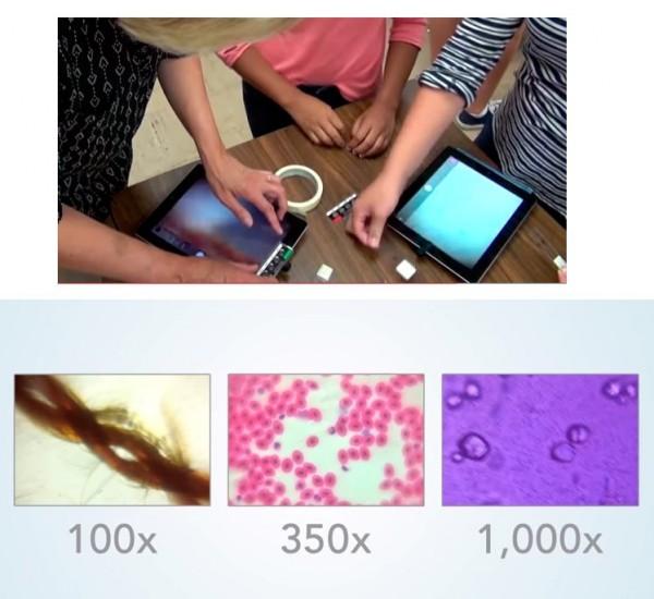 Ya es posible transformar nuestro teléfono en un microscópio 1000x por menos de un dolar