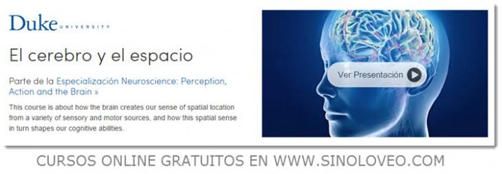 El cerebro y el espacio