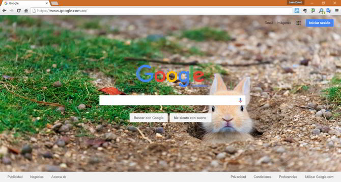 google wallpaper bing