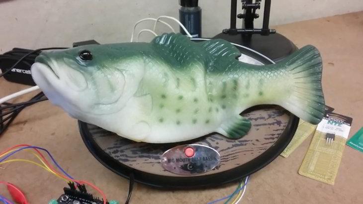 pescado-caucho-alexa-voz