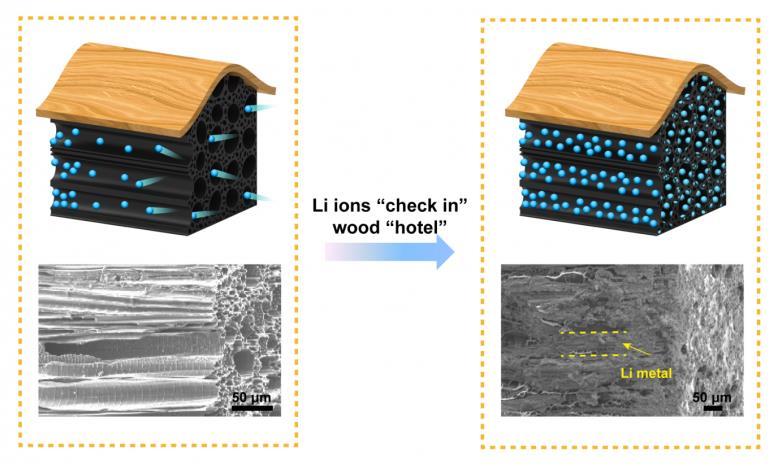 Crean baterías más seguras usando madera