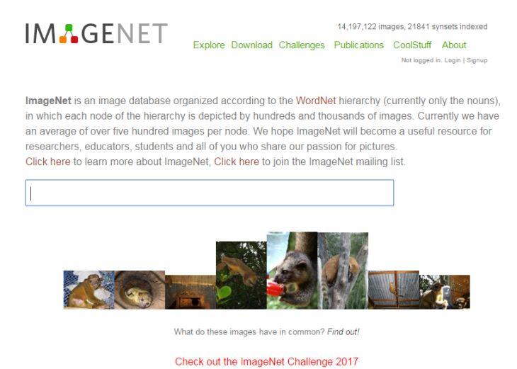 Imagen: Web de Imagenet