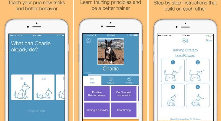 Pooch app iOS