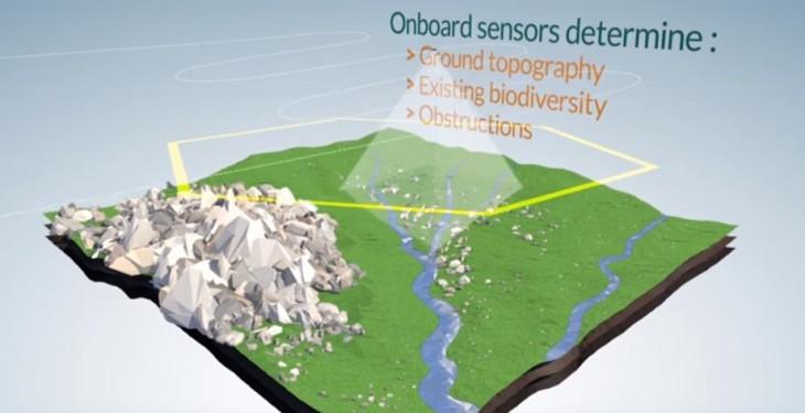 Drones que pueden plantar 100.000 árboles por día
