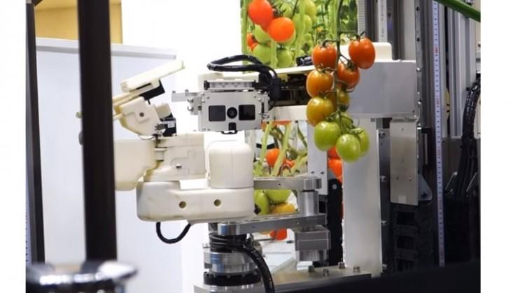 Robot Panasonic