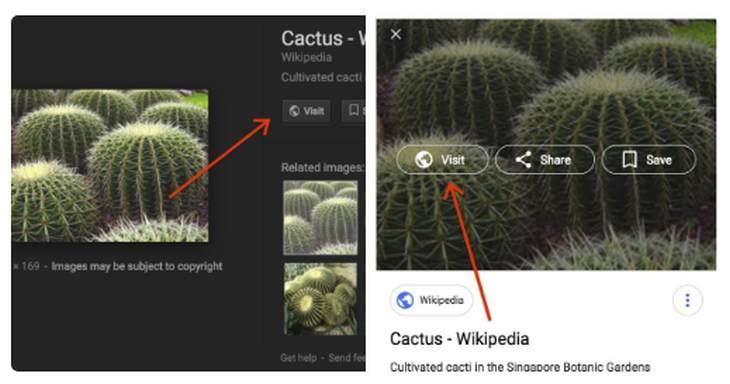 Cambios en el buscador de imagen de Google. Crédito de imagen: Google