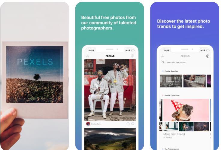 Pexels, uno de los mayores bancos de imágenes gratuitos, ya con app móvil