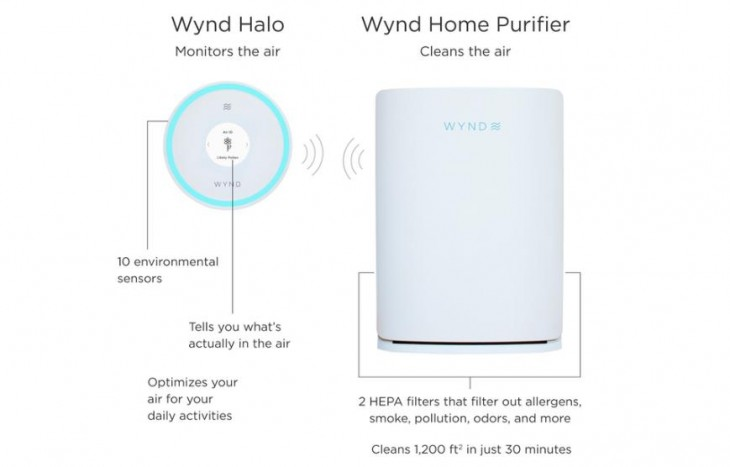 Wynd Halo + Home Purifier