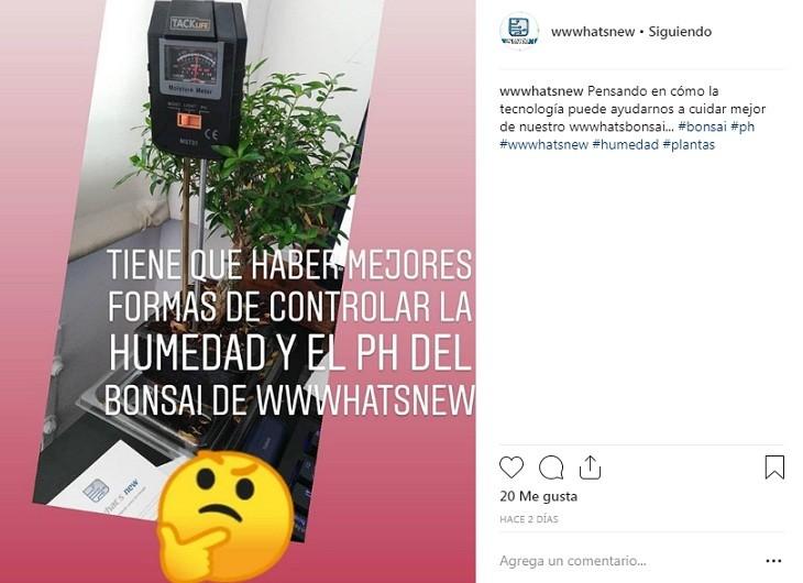 GIFs y emojis en la cuenta de Instagram para romper el hielo con seguidores