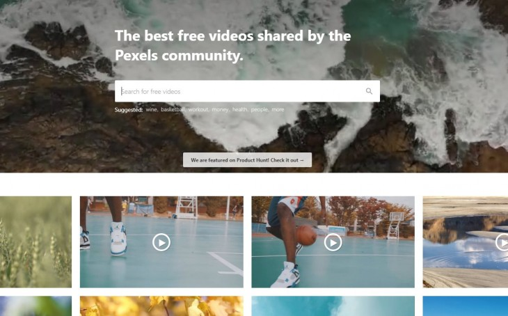 pexels vídeo