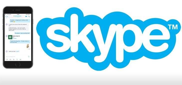 Skype_logo-730x342
