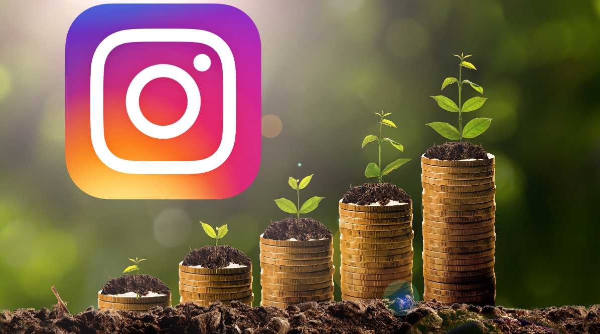 crecer instagram