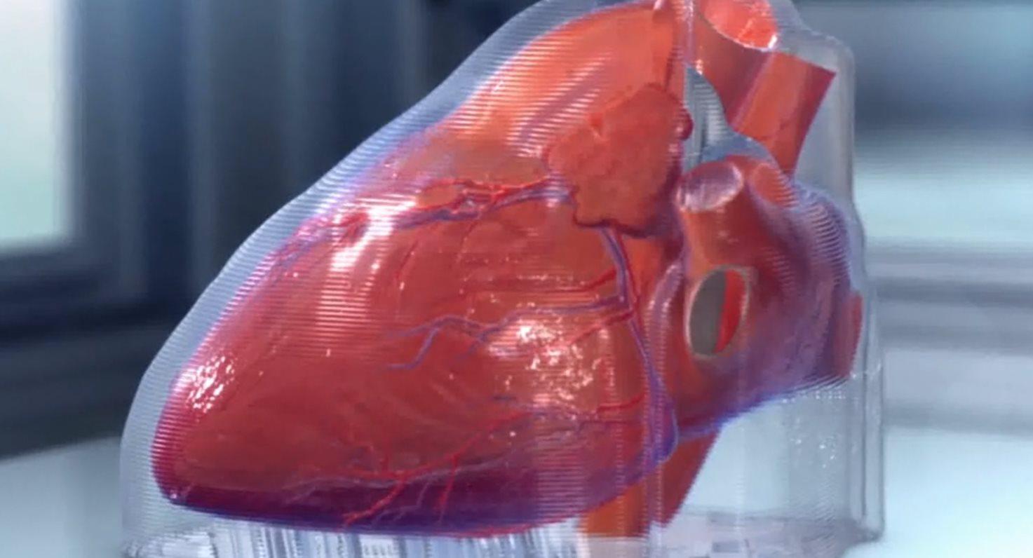 Han impreso en 3D un nuevo corazón humano en miniatura