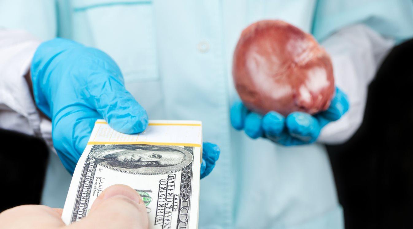 vender órganos