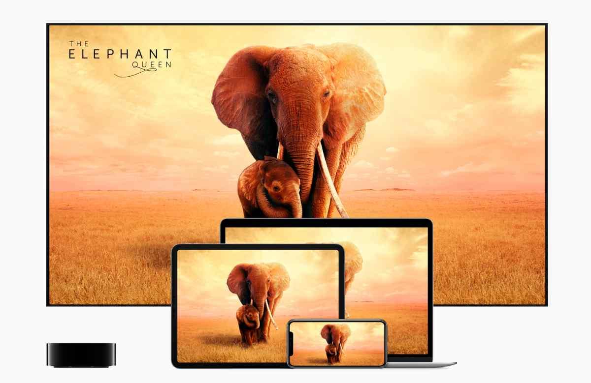 Tiembla, Netflix: llega Apple TV+ con precios rompedores en más de 100 mercados, incluida España
