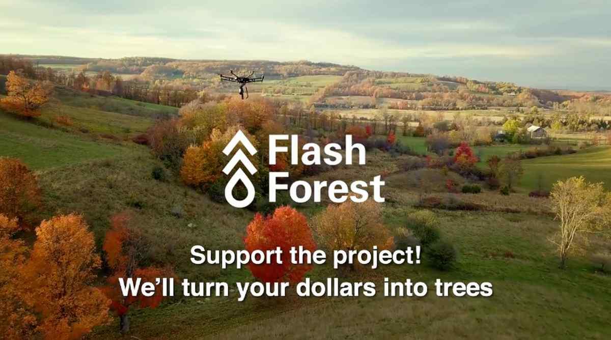 Una organización promete reforestar ecosistemas a nivel planetario mediante drones modificados