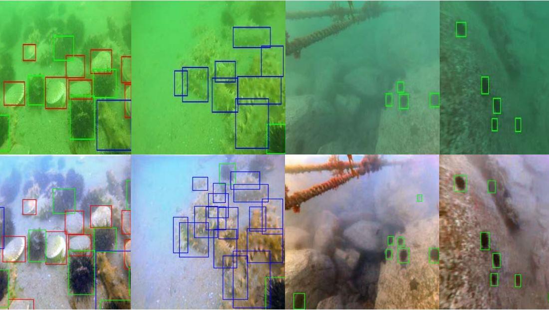 Sistema de Inteligencia Artificial pone color en fotos submarinas