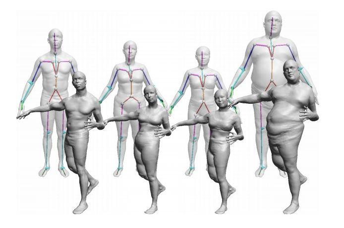 cuerpo 3D