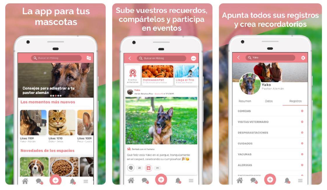 Nueva Midoog, la red social para nuestras mascotas