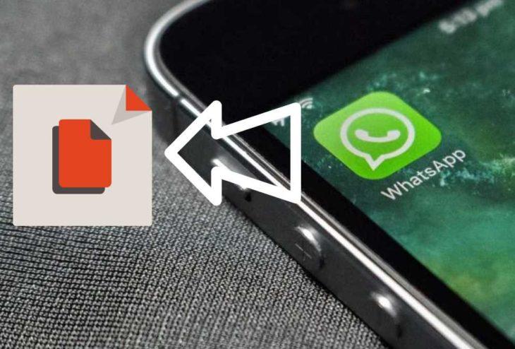 whatsapp accede archivos
