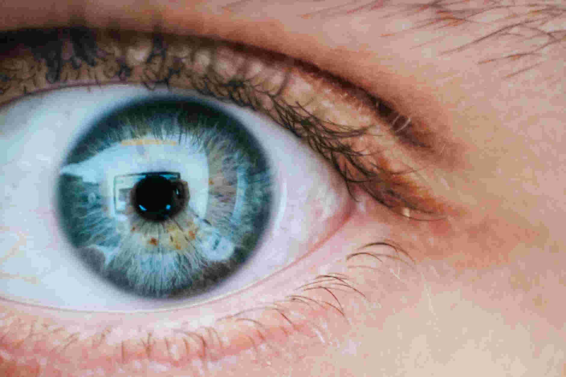 Nuevos detalles sobre la visión humana revelados gracias al uso de IA y un motor de gráficos