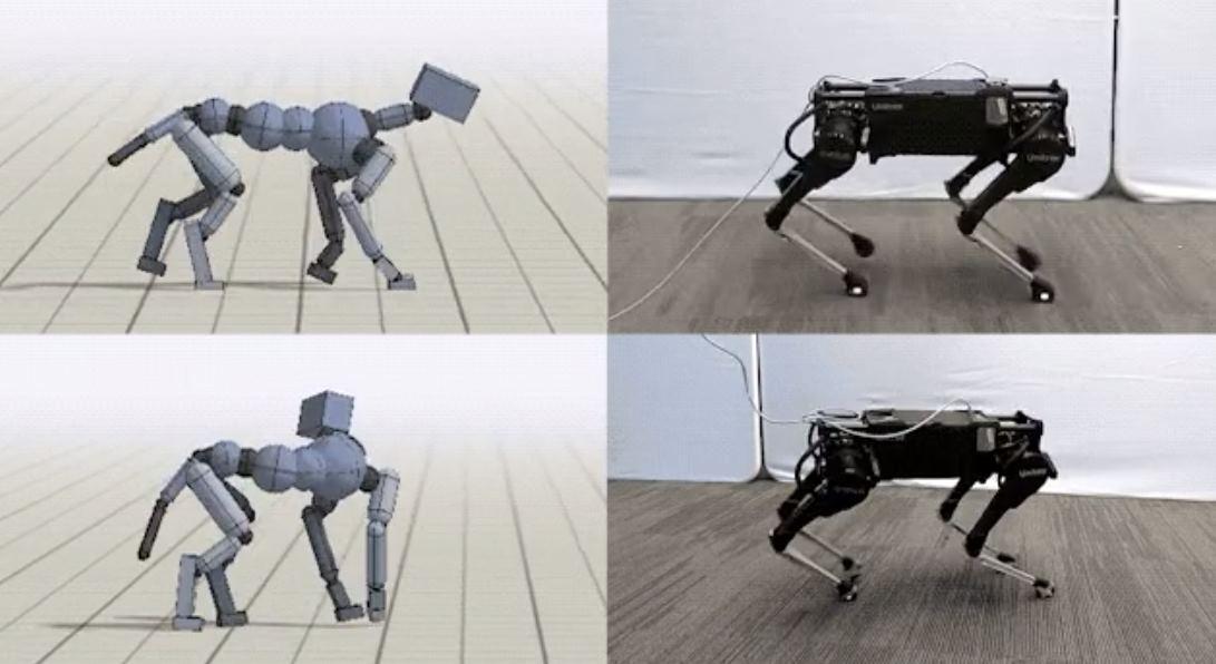 Google estudió el movimiento de los perros para enseñarlos a un robot