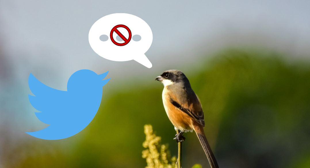 Twitter avisará a los usuarios antes de que publiquen un comentario ofensivo