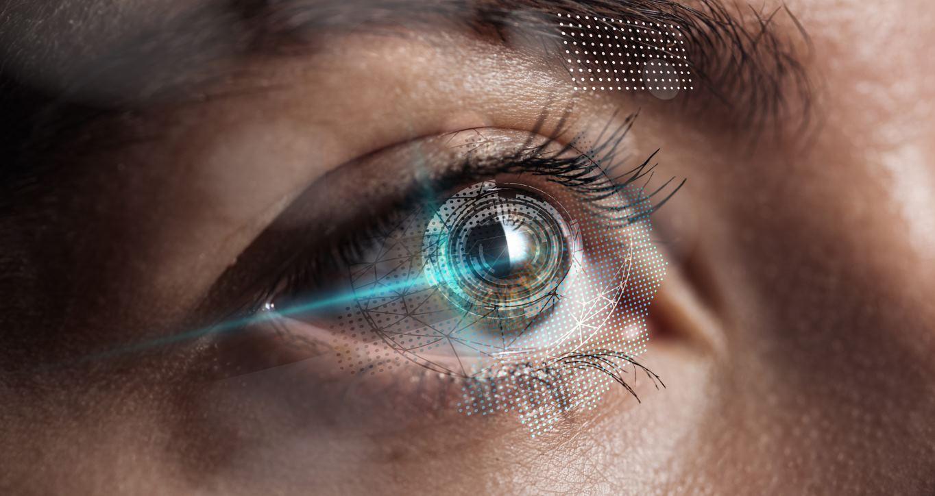 Científicos crean ojo artificial con humor vítreo incluido