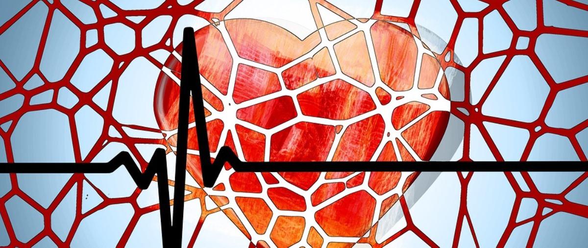 crean camara con impresion 3d para investigar enfermedad cardiaca