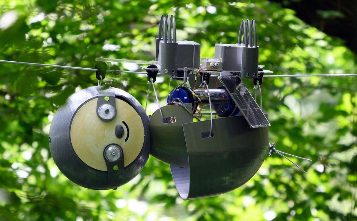 Para qué sirve un robot tan lento como un perezoso