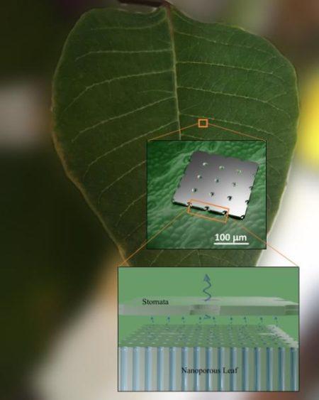 hojas sinteticas para retener agua